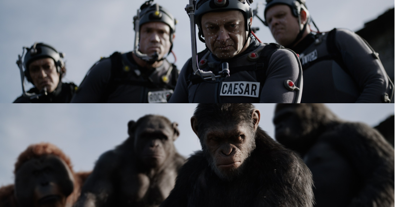 War of the planet of the apes short essay